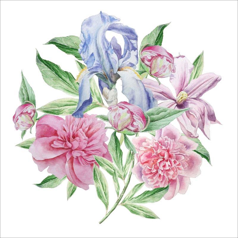 Cartão do vintage com flores da mola íris Peônia Clematis watercolor ilustração royalty free