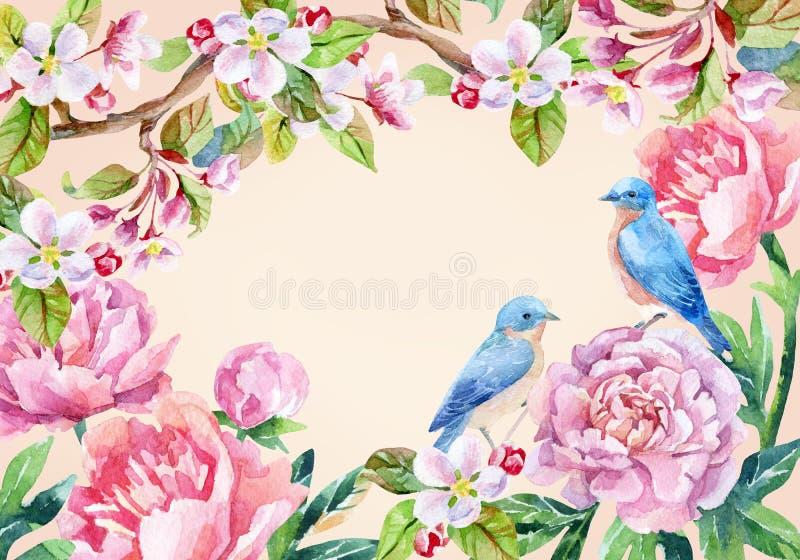 Cartão do vintage com flores e pássaros Fundo da mola ilustração royalty free