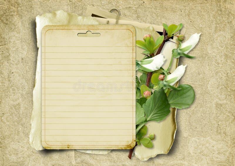 Cartão do vintage com flores e quadros ilustração stock