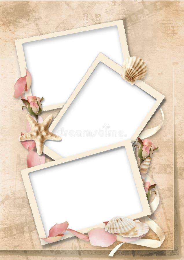 Cartão do vintage com seashells e rosas ilustração do vetor