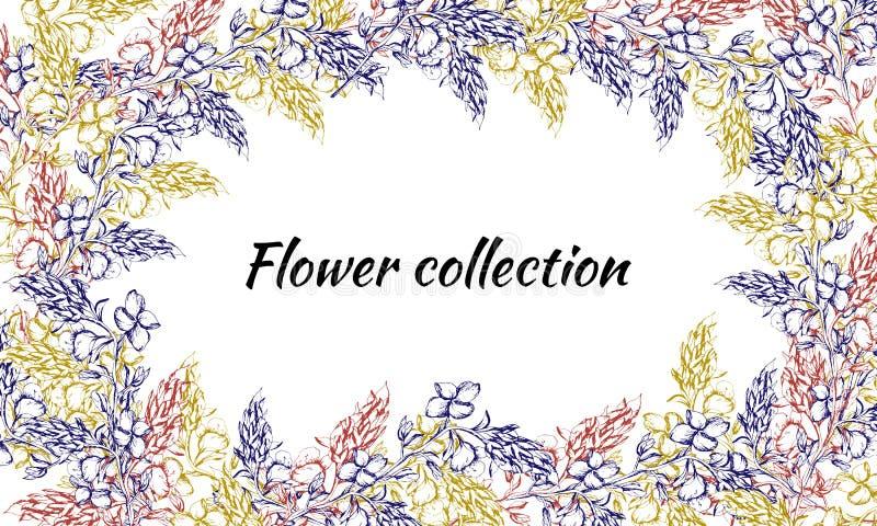 Cartão do vintage para o texto com cores do contorno Testes padrões tirados da mola para a decoração, papel, cartões, cumprimento ilustração royalty free