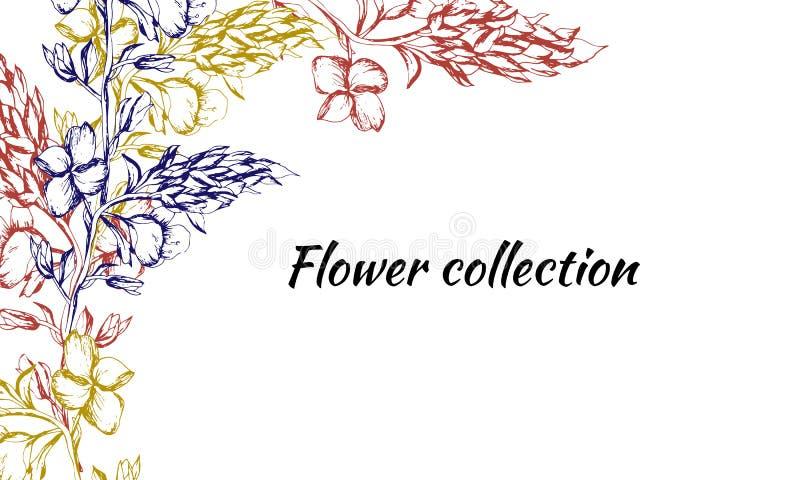 Cartão do vintage para o texto com cores do contorno Testes padrões tirados da mola para a decoração, papel, cartões, cumprimento ilustração stock