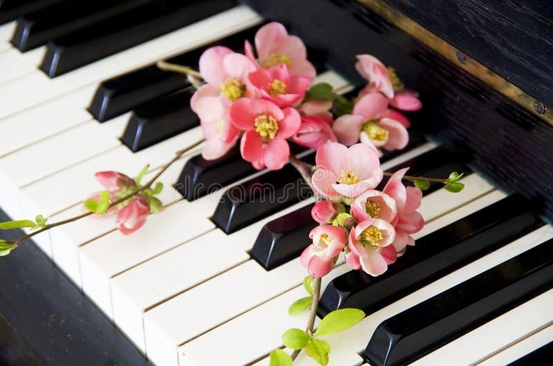 Cartão dos pêsames com flor foto de stock