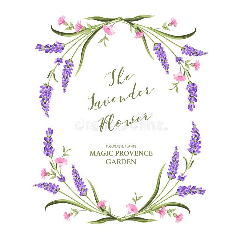 Cartão elegante com flores da alfazema ilustração stock