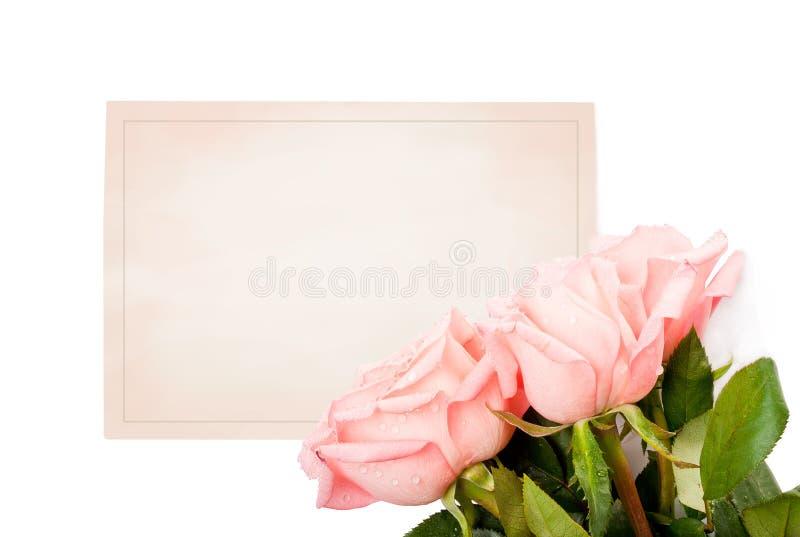 Cartão em branco para felicitações fotografia de stock royalty free