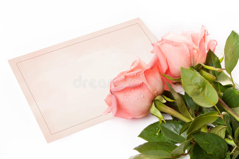 Cartão em branco para felicitações fotos de stock royalty free
