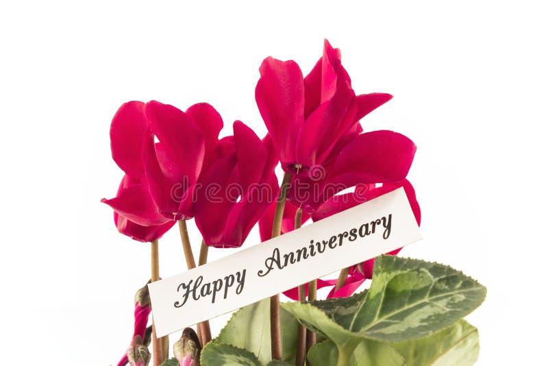 Cartão feliz do aniversário com o ramalhete dos Cyclamens imagens de stock