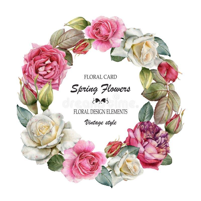 Cartão floral com um quadro de rosas da aquarela Ramalhete das flores ilustração stock