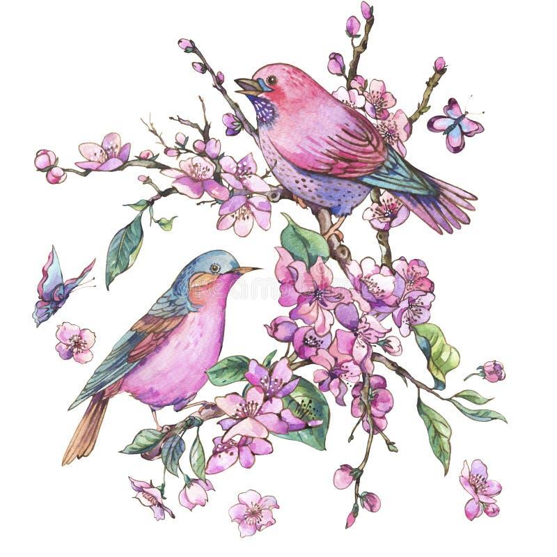 Cartão floral da mola da aquarela, ramos de florescência cor-de-rosa o ilustração stock