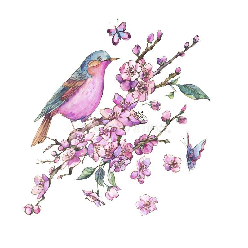 Cartão floral da mola da aquarela, ramos de florescência cor-de-rosa o ilustração do vetor
