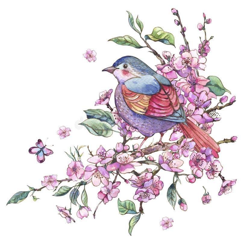 Cartão floral da mola da aquarela, ramos de florescência cor-de-rosa o ilustração royalty free