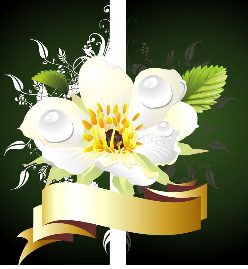 Cartão floral do amor ilustração do vetor