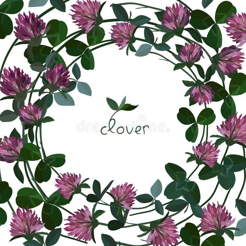 Cartão floral do vetor ilustração do vetor