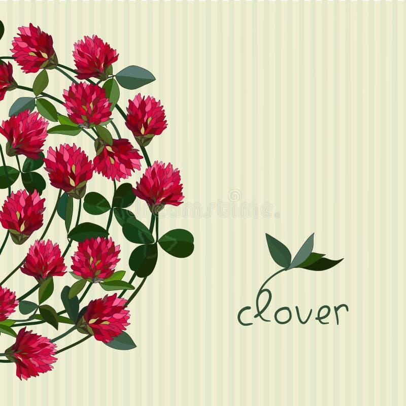 Cartão floral do vetor ilustração stock