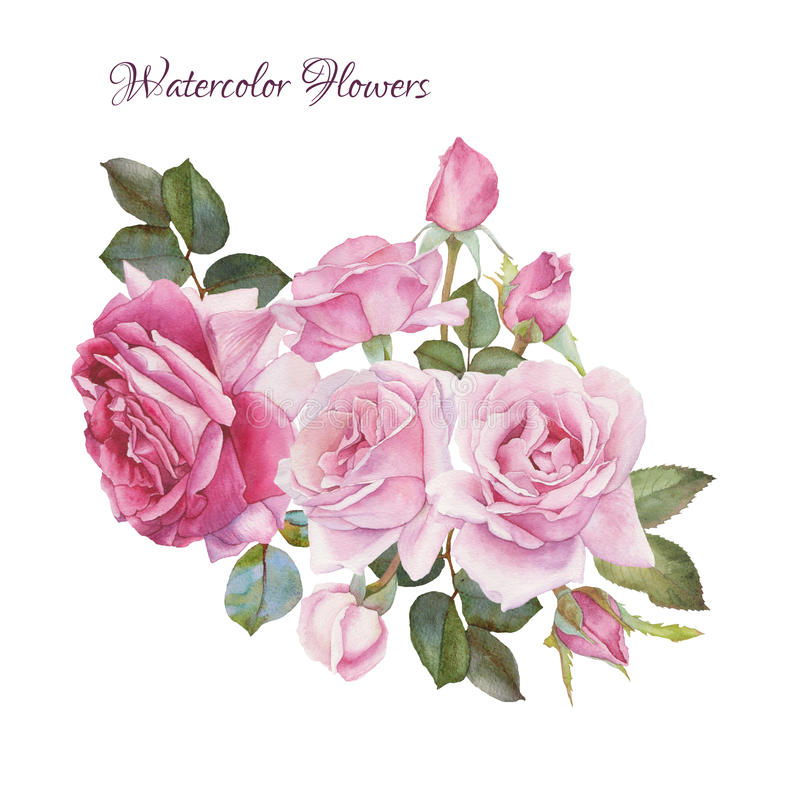 Cartão floral Ramalhete de rosas da aquarela ilustração stock