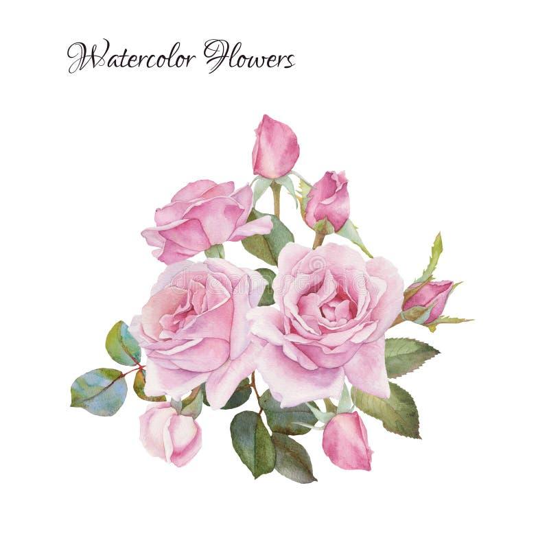 Cartão floral Ramalhete de rosas da aquarela ilustração royalty free