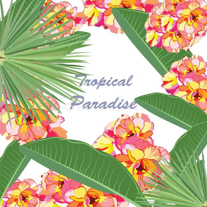 Cartão floral tropical do paraíso da aquarela ilustração stock
