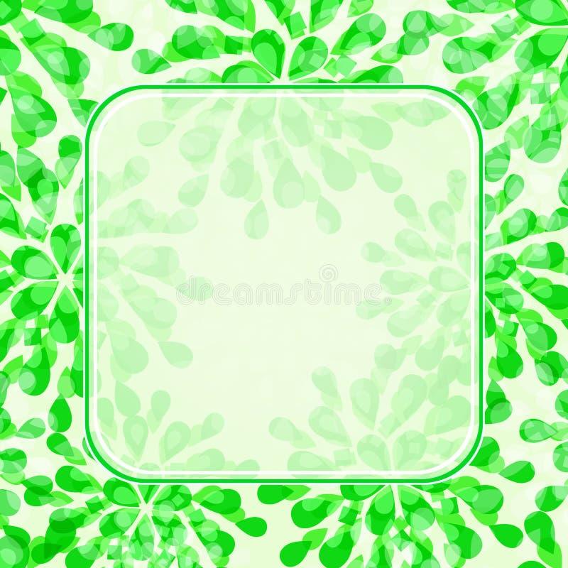 Cartão floral verde do convite ilustração do vetor