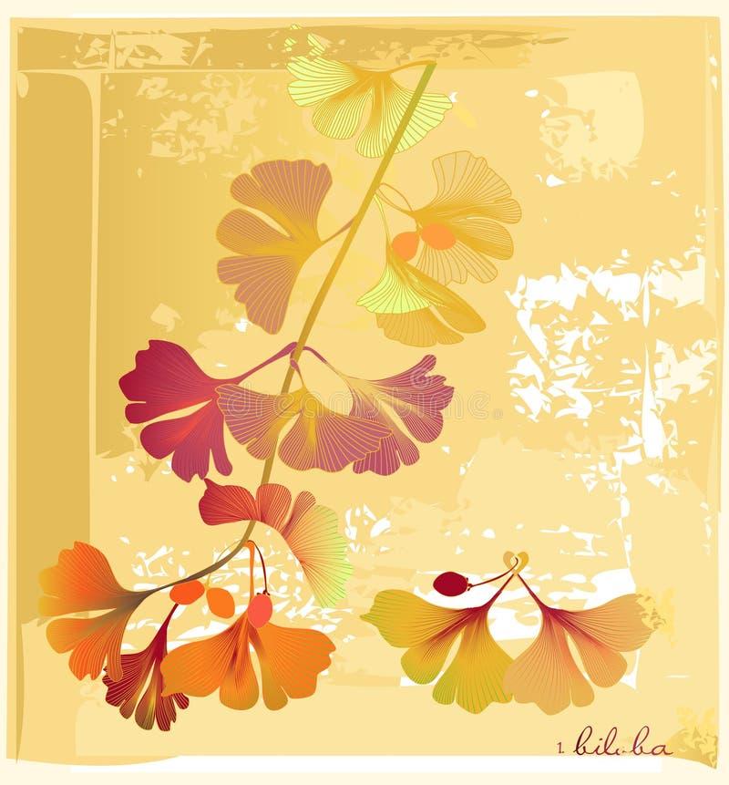 Cartão no herbarium com biloba ilustração stock