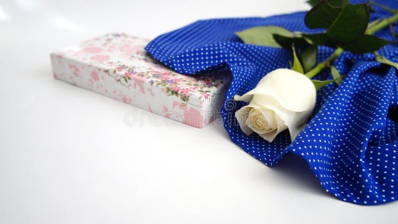 Cartão, rosa do branco na tela azul foto de stock