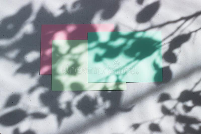 Cartão vazio verde, cor-de-rosa, folha para escrever Disposição para adicionar etiquetas Luz dura natural, sombras profundas Somb fotografia de stock