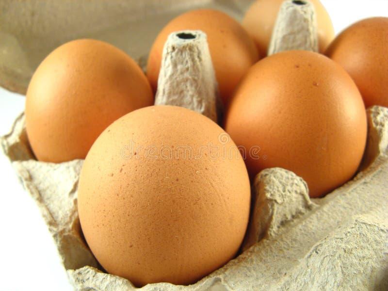 Cartón de huevos fotos de archivo