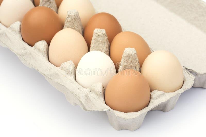 Cartón de huevos fotografía de archivo