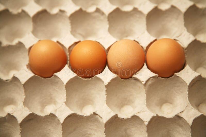 Cartón del huevo con 4 huevos fotos de archivo