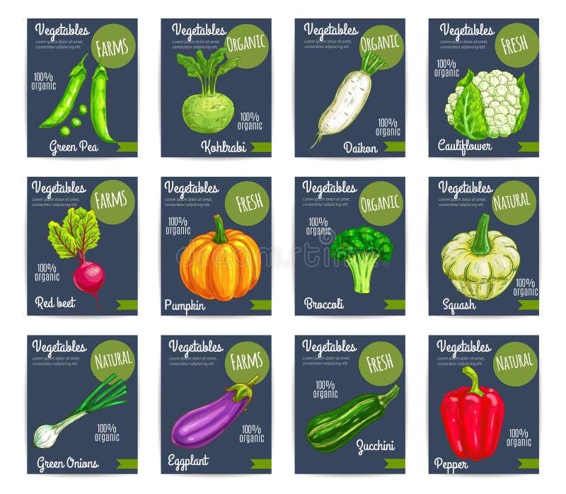Cartões de preço orgânicos do vetor dos vegetais da exploração agrícola ilustração stock