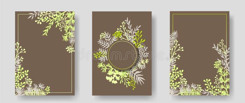 Cartões do convite com galhos ervais e ramos ilustração do vetor
