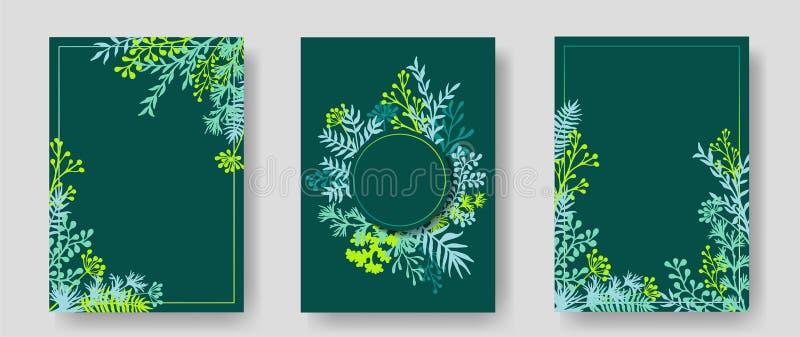 Cartões do convite com galhos ervais e ramos ilustração stock