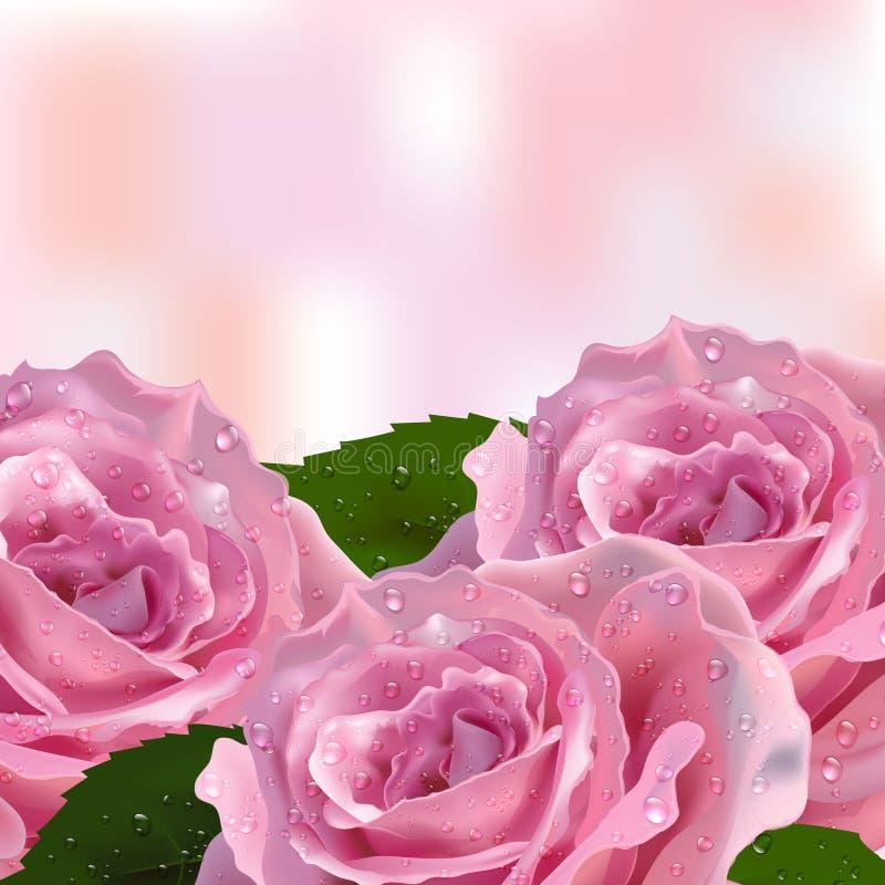 Cartões do convite do fundo com rosas ilustração do vetor