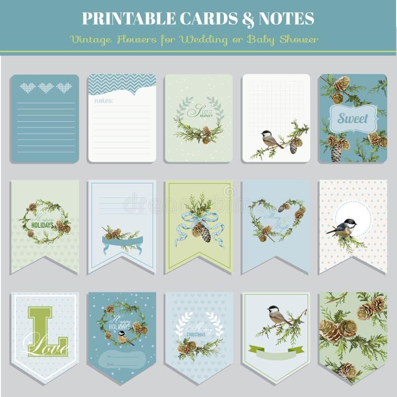 Cartões do tema dos pássaros do inverno do Natal ilustração royalty free