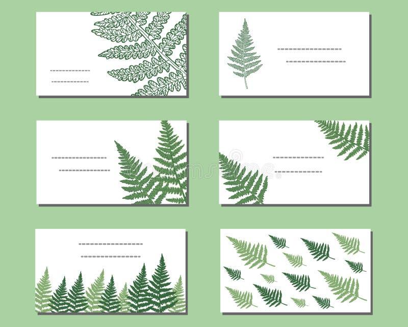 Cartões do vetor com samambaia selvagem ilustração royalty free