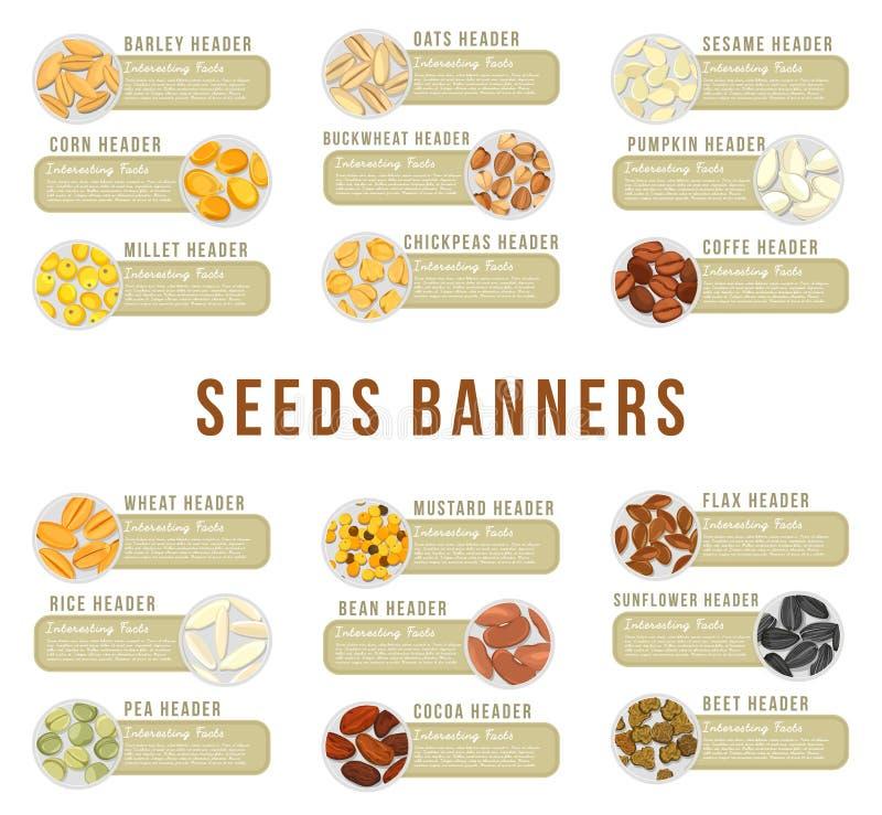 Cartões ou bandeiras, encabeçamento com alimento dos núcleos das sementes ilustração do vetor