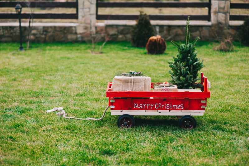 Cart containing the Christmas tree royalty free stock images