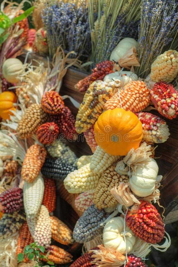 Cart filled Bountiful Autumn Harvest royalty free stock image