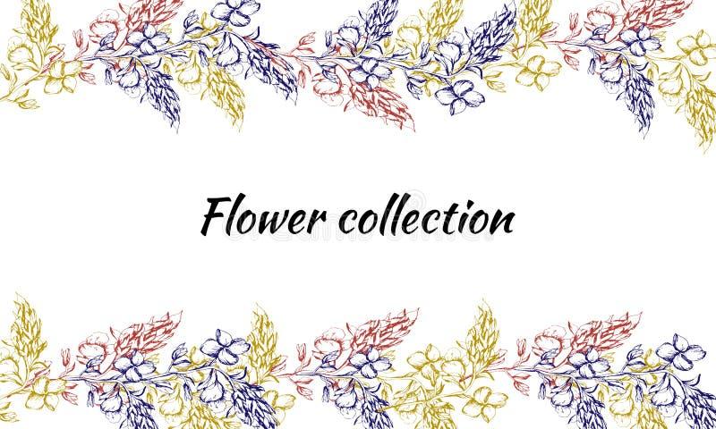 Cart?o com flores da mola Teste padr?o do vintage Flores tiradas do contorno para a decoração, papel, cartões, cumprimentos Ilust ilustração do vetor