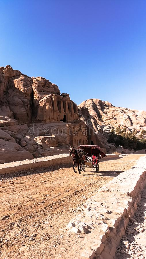 Cart pulled by horse. Bedouin riding in a cart. Animal transport in the Petra reserve. stock image