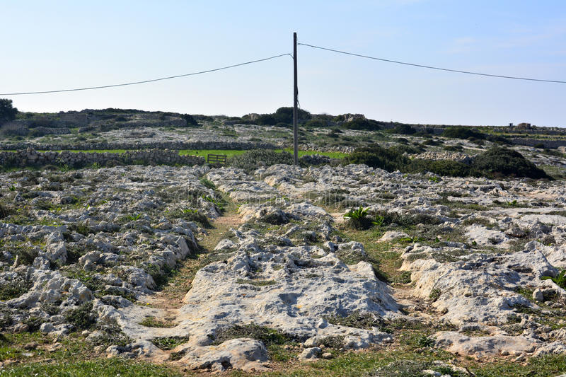 Cart ruts in Malta. Parallel grooves of prehistoric cart ruts, mysteriously scored into the rock at Clapham Junction in Malta royalty free stock images