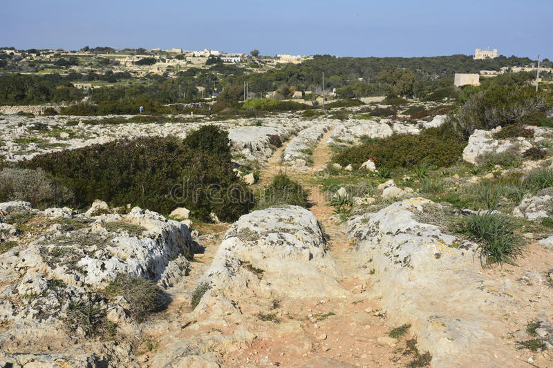 Cart ruts in Malta. Parallel grooves of prehistoric cart ruts, mysteriously scored into the rock at Clapham Junction in Malta royalty free stock photography