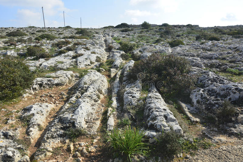 Cart ruts in Malta. Parallel grooves of prehistoric cart ruts, mysteriously scored into the rock at Clapham Junction in Malta royalty free stock photos