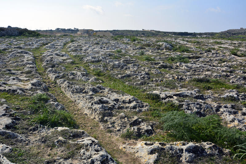 Cart ruts in Malta. Prehistoric cart ruts, mysteriously scored into the rock at Clapham Junction in Malta stock photos