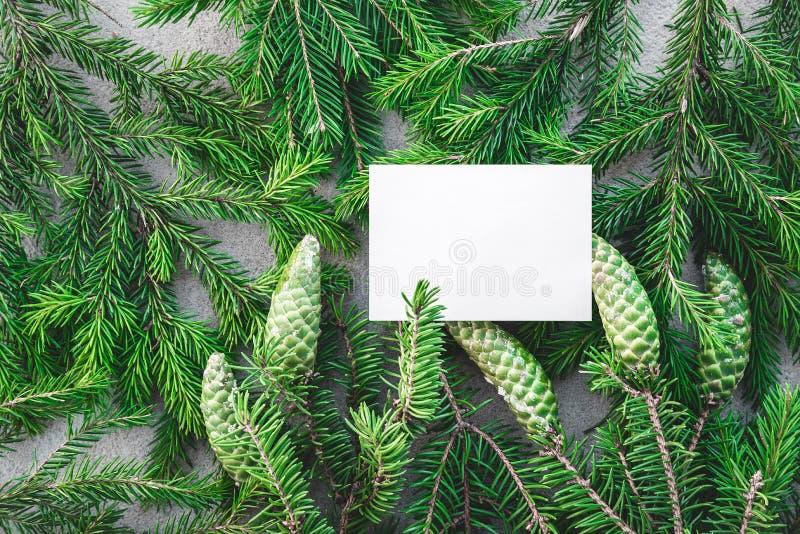 Carta bianca in bianco e rami verdi dell'abete fotografia stock libera da diritti