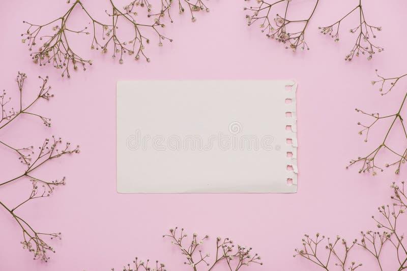 Carta in bianco bianca con i fiori pastelli e nastro su fondo pallido rosa, struttura floreale Saluto, invito e festa creativi c fotografia stock libera da diritti