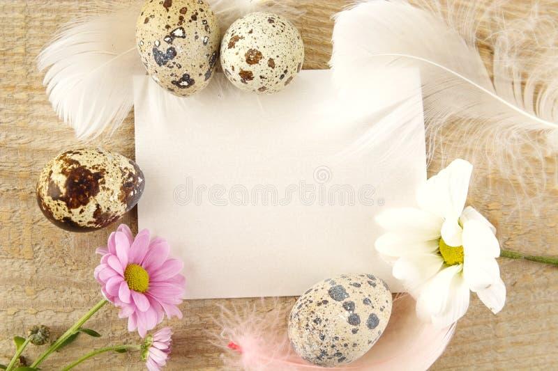 Carta in bianco per i saluti di pasqua sulla plancia di legno con le uova, fiore immagine stock