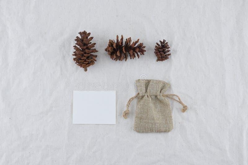 Carta, borsa della tela di sacco e pinecones bianchi in bianco fotografie stock