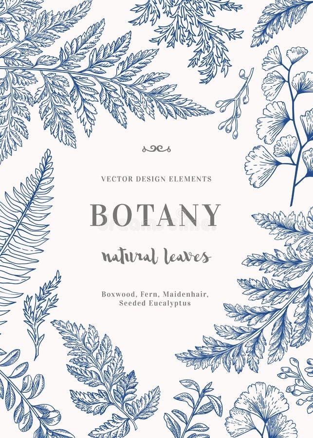 Carta botanica per con le foglie illustrazione vettoriale