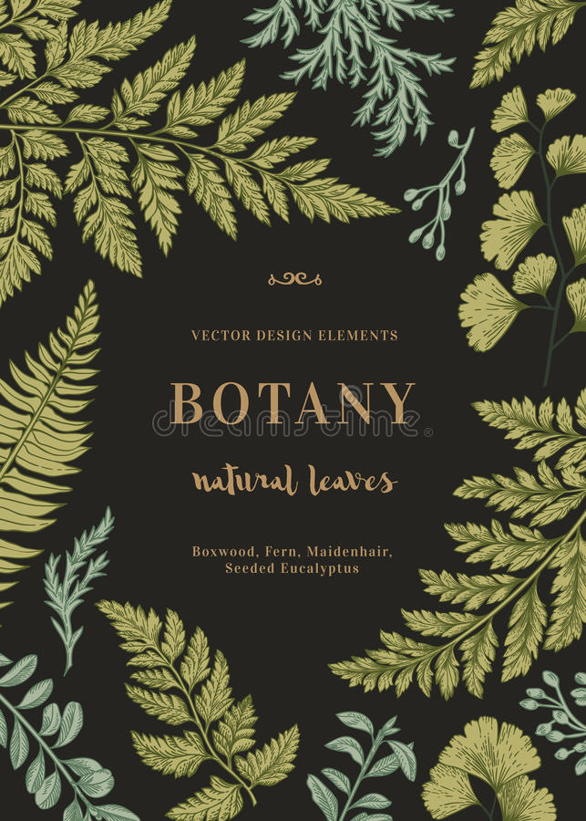 Carta botanica per con le foglie illustrazione di stock