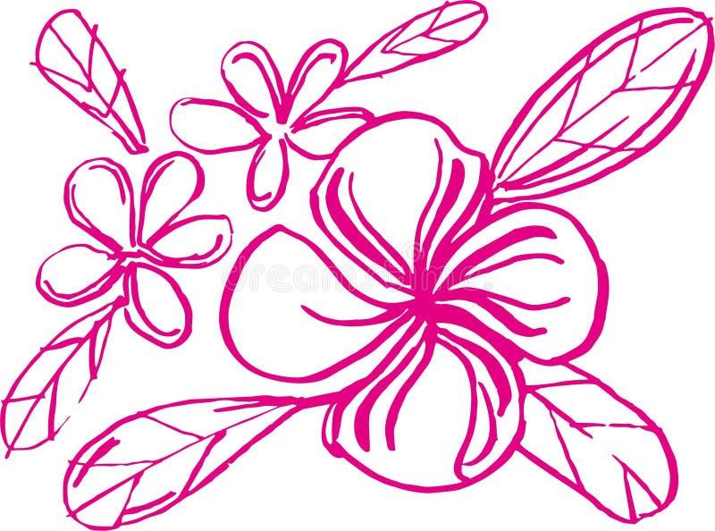 carta branca da arte da flora ilustração royalty free